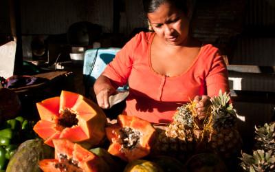 Cuban Women. Food Sovereignty Guarantors